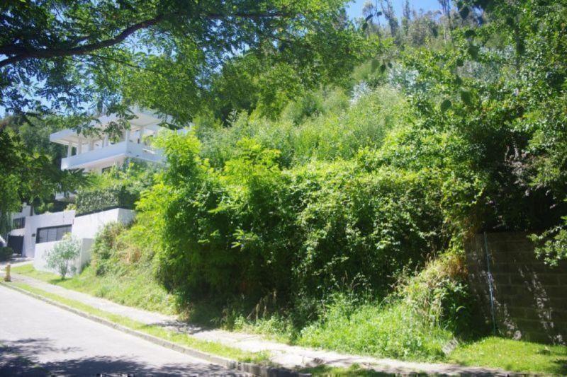 Venta Terreno en Fuente de Piedra, Chiguayante